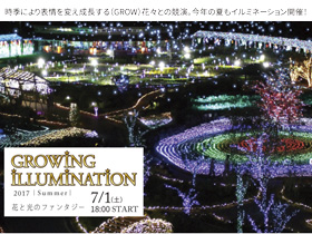 GROWING ILLUMINATION